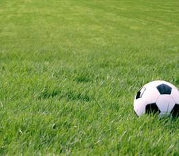 グラウンドキーパー!野球やサッカーにゴルフのグリーン、芝の職人!