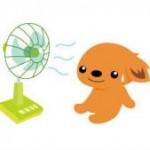 扇風機の簡単な掃除、お手入れ方法!汚れは保管方法でも差が出るぞ!